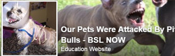 Our Pets Were Attacked by Pit Bulls – BSL Now